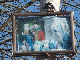 фото 2006г